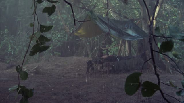 vidéos et rushes de medium angle through hanging vines of tent or campsite with man lying on cot. could be soldier. jungle or forest. rain. could be vietnam war. neg cut. - colombie