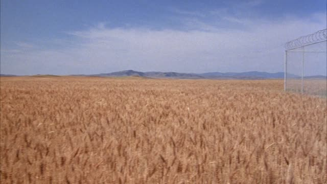 wide angle of wheat field, mountains in background. pan left to right, see barbed wire fence with razor wire along top, underground missile silo or launcher and blast door in center. see door slide open. - shaving equipment stock videos & royalty-free footage