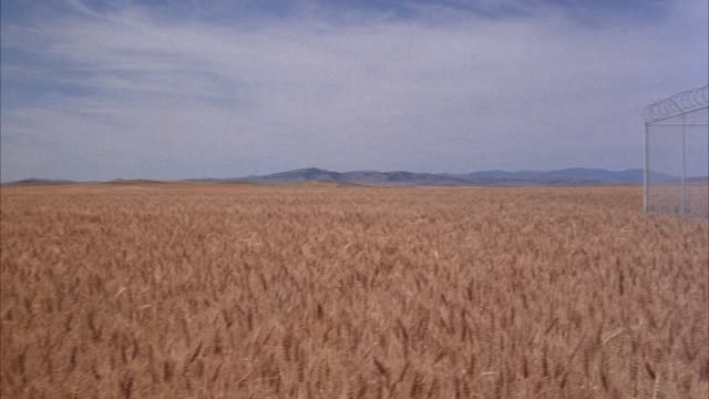 "wide angle wheat field, mountains in background. pan left to right, see barbed wire fence with razor wire along top, warning sign posted on front with ""restricted""  notice. see black van  and figure in background near underground missile silo or launcher - shaving equipment stock videos & royalty-free footage"