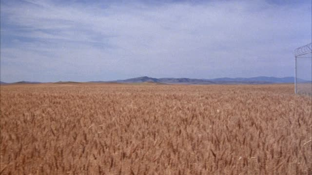 "wide angle  of wheat field, mountains in background. pan left to right, see barbed wire fence with razor wire along top, warning sign posted on front with ""restricted""  notice. see black van  and figure in background near underground missile silo or launc - shaving equipment stock videos & royalty-free footage"