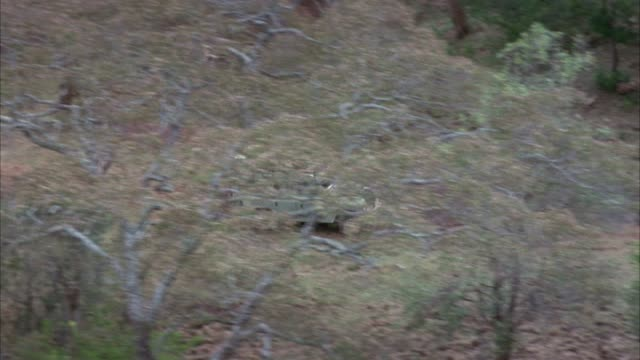 aerial tracking shot of green suv or land rover driving through trees in forest to right. could be used for safari. - land rover stock videos and b-roll footage