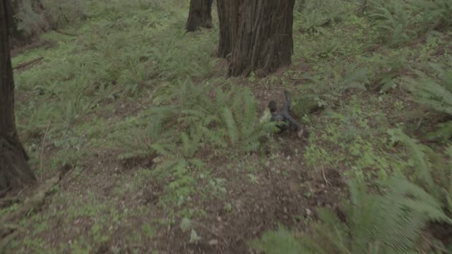 hand held medium angle of person in jumpsuit running and rolling down hill in woods or forest. trees, fern, and plants visible. stunts. - jumpsuit stock videos and b-roll footage