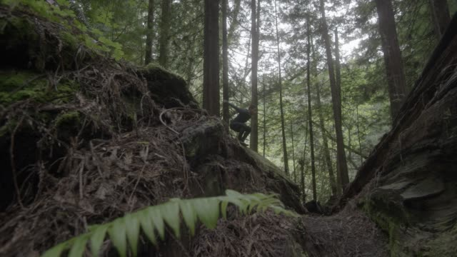 up angle of person in jumpsuit running through woods or forest and jumping over fallen trees. stunts. ferns and plants visible. - jumpsuit stock videos and b-roll footage