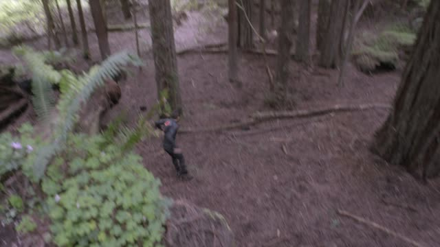 high angle down of person in jumpsuit running through woods or forest and jumping over fallen trees. person tucks nad rolls. stunts. ferns and plants visible. - jumpsuit stock videos and b-roll footage