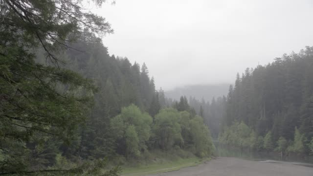 WIDE ANGLE OF LAKE OR RIVERS IN WOODS OR FOREST. MISTY AND OVERCAST. COULD BE FOG. BOAT LOADING ZONE OR SHORE VISIBLE.