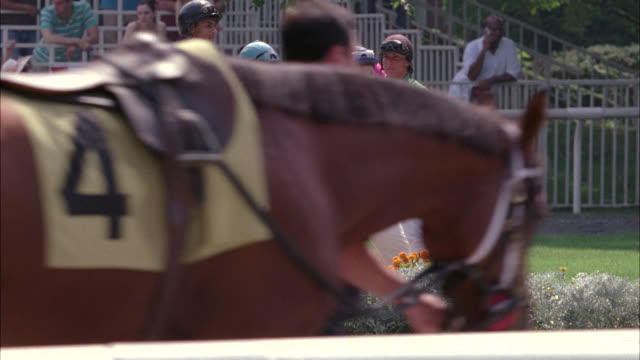 vídeos y material grabado en eventos de stock de wide angle of jockeys standing in center of field while horses are walked around racetrack. monmouth park, oceanport, new jersey. - mamífero ungulado