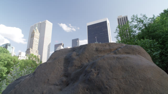 pan up from boulder or rock to wide angle of central park and new york city skyline. high rises buildings and hotels. trees and lake visible. plaza hotel off fifth avenue visible. - boulder rock点の映像素材/bロール