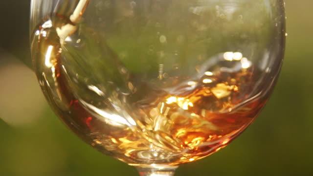 vídeos de stock, filmes e b-roll de glass of wine - extreme close up - comida e bebida