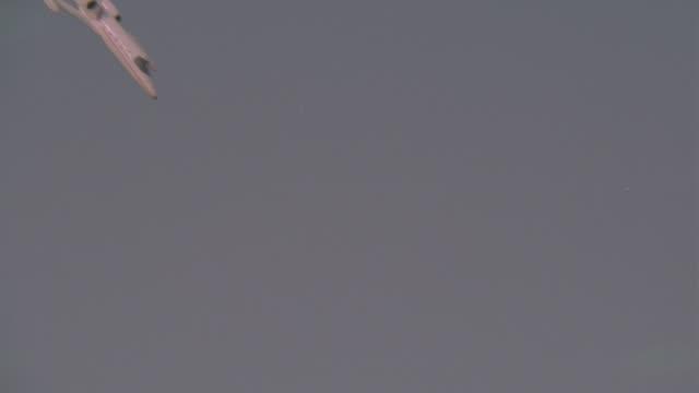 vídeos de stock e filmes b-roll de wide angle of lear jet or airplane crashing remote area or desert. accident. wreckage. explosions. fires. action. - acidente de avião