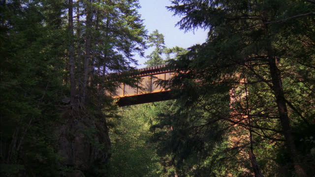 up angle of train moving left to right across mountain bridge. trees or woods surround bridge. pan down to creek, river, rapids. dead body or corpse floats downstream. - dead body stock videos & royalty-free footage