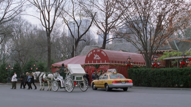 pan right to left of tavern on the green in central park with white christmas lights and decorations. see nyc taxi pull up next to a white horse drawn carriage in front of restaurant as people enter and exit. see new york city skyline in background. could - christmas decoration stock videos & royalty-free footage