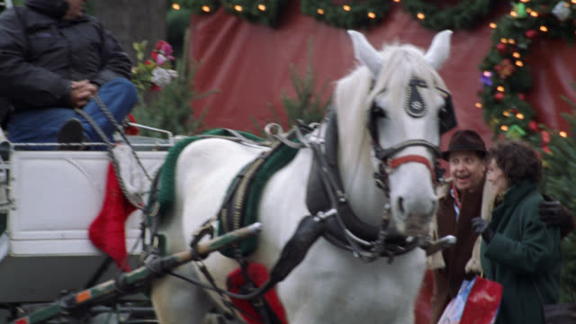pan down from tavern on the green sign to restaurant entrance. see christmas decorations, lights, and wreaths outside restaurant. see doorman in front while people leave. camera follows one couple walk to and get in a white horse drawn carriage. pan up to - tavern on the green stock videos & royalty-free footage