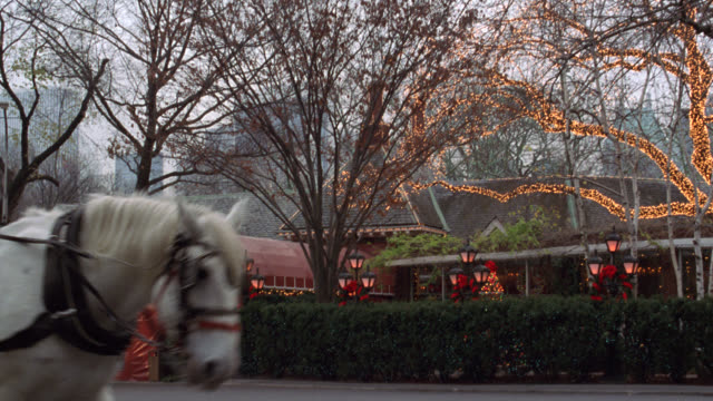 pan right to left of tavern on the green in central park. see restaurant with christmas lights, decorations, and wreaths. see white horse drawn carriage pass in foreground from offscreen left. see people waiting outside entrance and someone entering. coul - tavern on the green stock videos & royalty-free footage