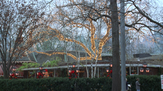 pan right to left to entrance of tavern on the green in central park. see restaurant with christmas lights, decorations, wreaths, and people walking in front. see white horse drawn carriage pass from offscreen right to people waiting at restaurant's entra - tavern on the green stock videos & royalty-free footage