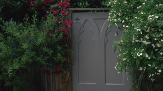 medium angle of door or gate in garden. plants, flowers, bushes and shrubs. - 2010 stock videos & royalty-free footage