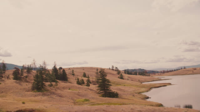 vídeos de stock e filmes b-roll de aerial of dry grass fields and meadows on hills in mountains or wilderness. rv or recreational vehicle driving on dirt road. ponds. pine trees of woods or forest. could be yellowstone national park. - pine
