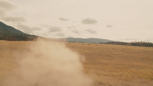 vídeos de stock, filmes e b-roll de process plate straight back driving on dirt country road through wilderness, hills and mountains. dry grass fields or meadows. pine trees in woods or forests. could be yellowstone national park. - placa de processo