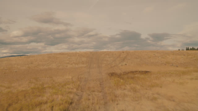 vídeos de stock, filmes e b-roll de process plate straight forward driving over dry grass field or meadow to dirt country road through wilderness, hills and mountains. pine trees in woods or forests. could be yellowstone national park. - placa de processo