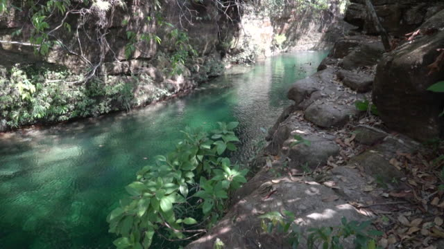 serra do roncador - brazil - flowing water stock-videos und b-roll-filmmaterial