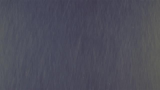 effects: rain against black velvet - visual effect stock videos & royalty-free footage