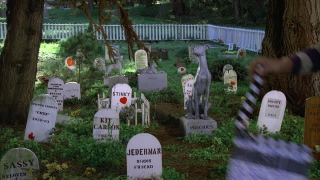 est pet cemetery    cmi to dog statue    trim - gravestone stock videos & royalty-free footage
