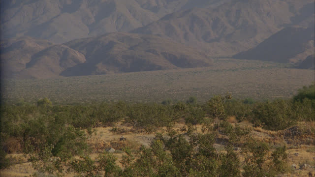 see palm springs scenic desert with hills in bg then see a black and white police car drive up to a small house in the desert   see another all white police car parked with around 10 males milling around - palm springs california stock videos & royalty-free footage