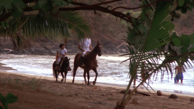 med ls   cove  hawaiians  natives   roarke and tattoo ride horses on horseback riding on beach from l-r / cove bay sea inlet ocean waves / beach shoreline coastline / palm trees - hawaii islands stock videos & royalty-free footage