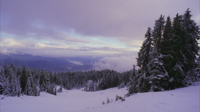stockvideo's en b-roll-footage met establish snowy mountains mountain range with snow and pine trees   heavy snow - sneeuwkap