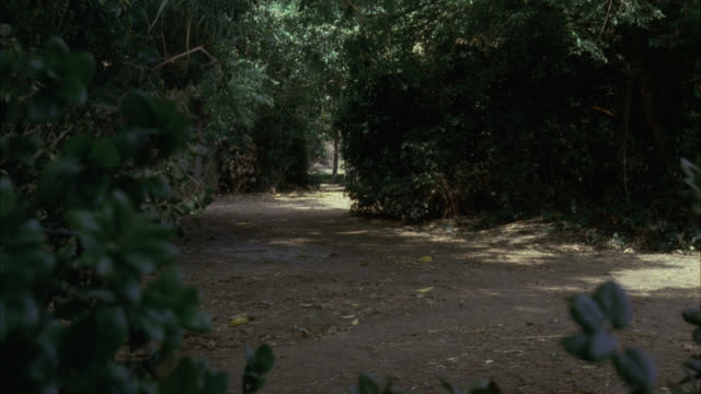 shot looking down dirt road. thick trees surrounding road. black classic car drives from bg to fg. camera pans l-r as car drives l-r and off screen. - 1945 stock videos & royalty-free footage
