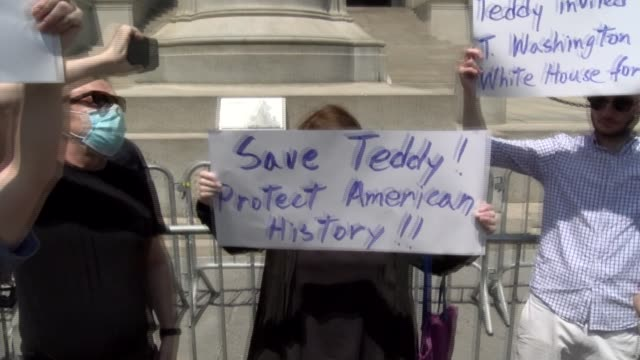 save teddy protect american history sign - salmini video stock e b–roll
