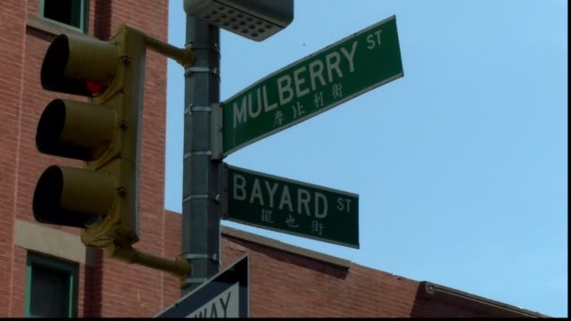 street sign mulberry and bayard - salmini stock videos & royalty-free footage