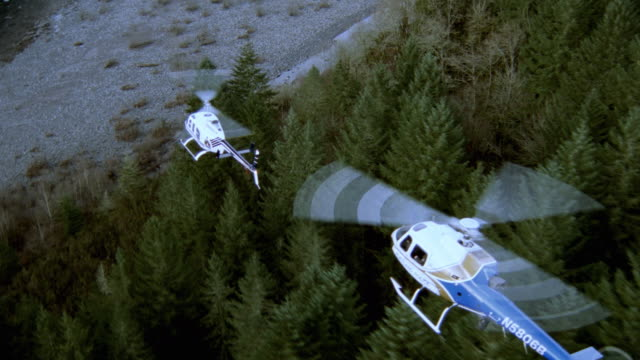 dx - air to air - aviation/helicopters - scenic/woods,forests - scenic/river - searching stock videos & royalty-free footage