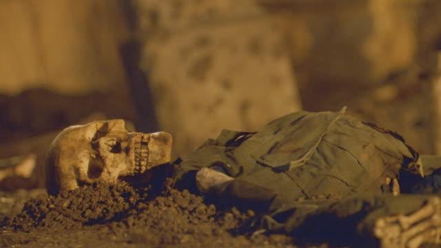 vidéos et rushes de nx - bones/skulls - mort concepts