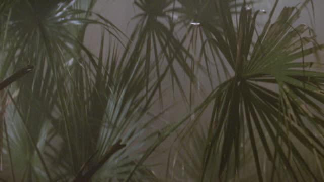 jungles-vietnam-marines - machine gun stock videos & royalty-free footage