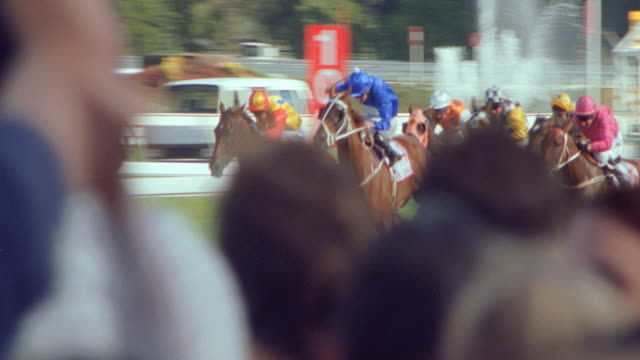 dx - horse racing - horses - crowds / sports - horse racing stock videos & royalty-free footage