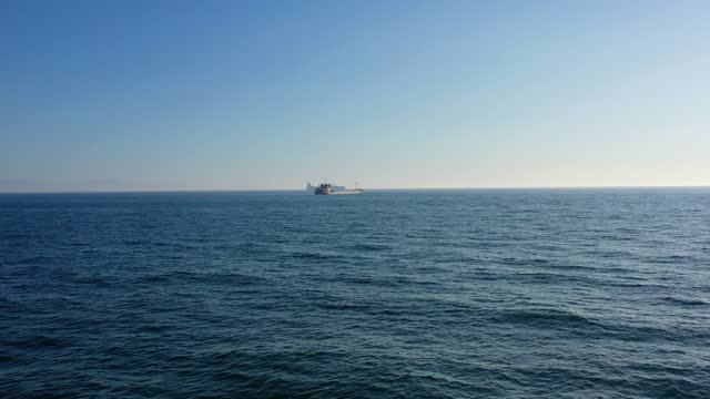 distant seas - three animals stock videos & royalty-free footage