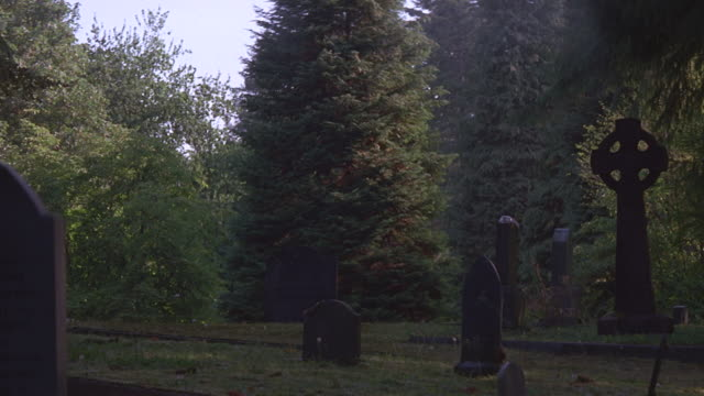 headstones in small cemetery in woods - 宗教上のシンボル点の映像素材/bロール