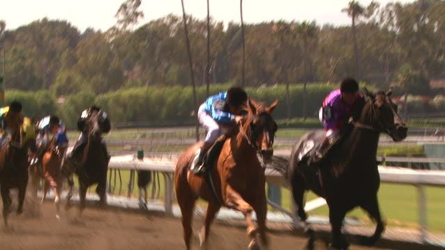 horse race footage (santa anita racetrack) - racehorse stock videos & royalty-free footage