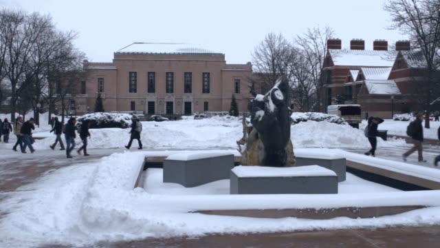 university of michigan campus, snow on ground, w/activity - michigan点の映像素材/bロール