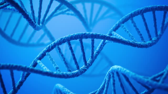 dna - helix model stock videos & royalty-free footage