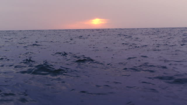 sunset over ocean, plate - horizon over water stock videos & royalty-free footage