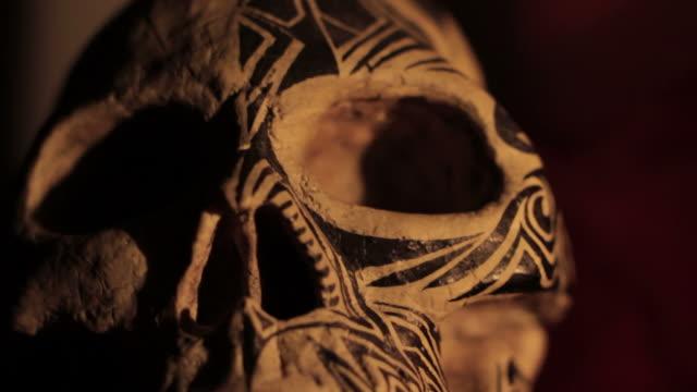 schädel - tierisches skelett stock-videos und b-roll-filmmaterial