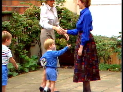 - ウィリアム王子点の映像素材/bロール