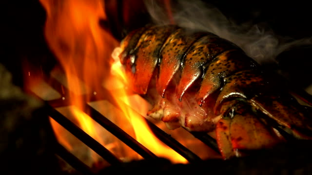 slow motion barbecue lobster 240fps - lobster stock videos & royalty-free footage
