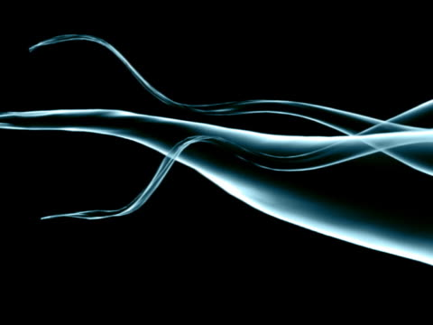 cloth and ribbon 3d moved by the wind blue black - ribbon stock videos & royalty-free footage
