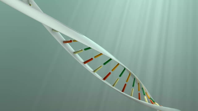 dna - high scale magnification stock videos & royalty-free footage