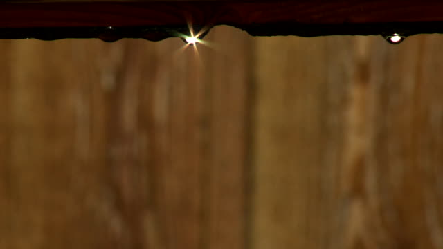 sun drops - keithmckenzie stock videos & royalty-free footage