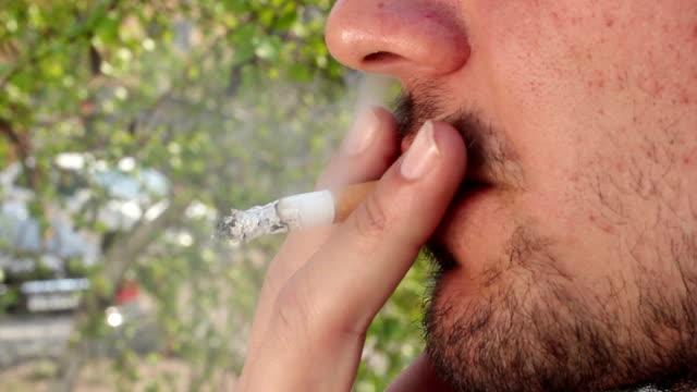 курящий человек (smoker) - human nose stock videos & royalty-free footage