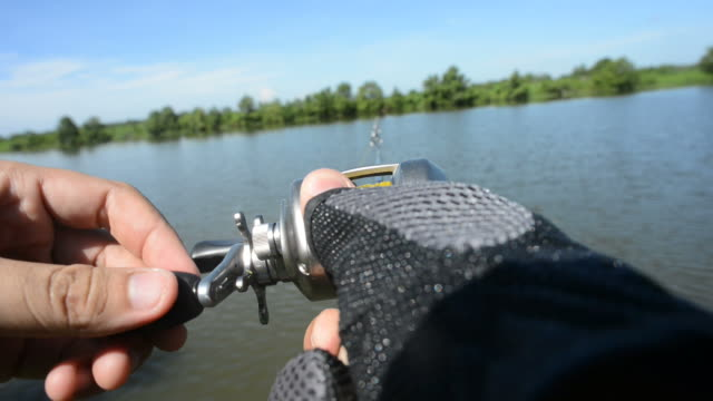 fish on! - fishing reel stock videos and b-roll footage