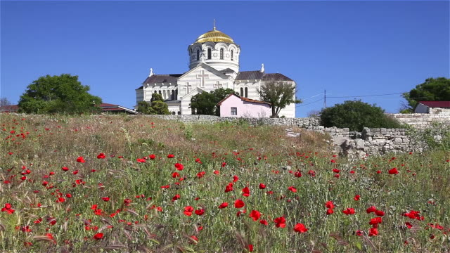 saint vladimir cathedral and poppies - sevastopol crimea stock videos and b-roll footage